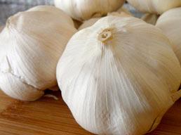 Controlling the strength of garlic
