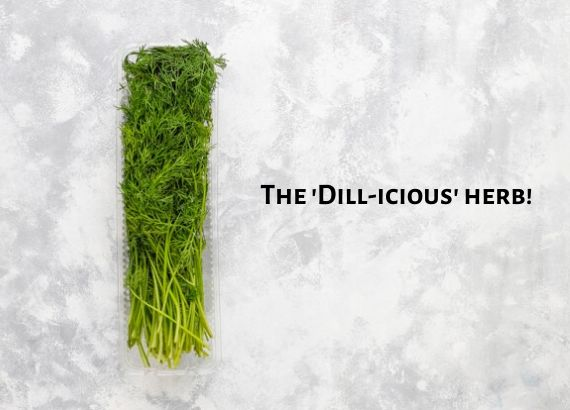 Dill maange more