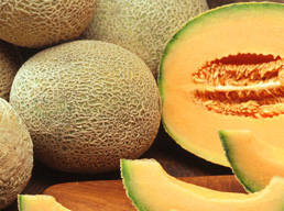 Melon for good health