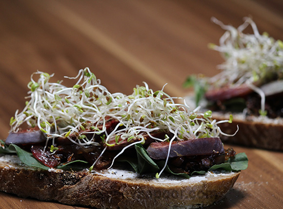 Caramalized Onion and Fig Open Sandwich