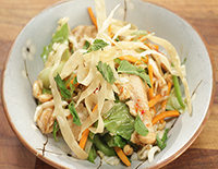 Crispy Asian Chicken Salad - SK Khazana