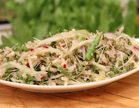 Salad with Cabbage Green and Quinoa - SK Khazana